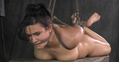 Elite BDSM Slave In Action