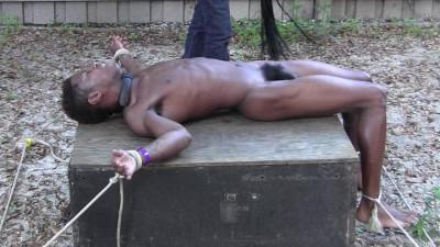 Forgotten Slave Part 1-5