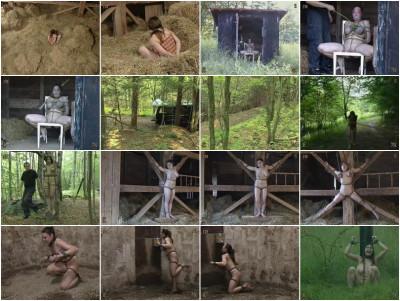 Insex – Pigfarm (129, 323, 781) 2003