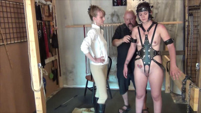 Blind Harnessed Bitted Part Three