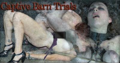 Captive Barn Trials - Dixon Mason