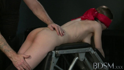The owner was the fan of hard sex and has spanked the servant