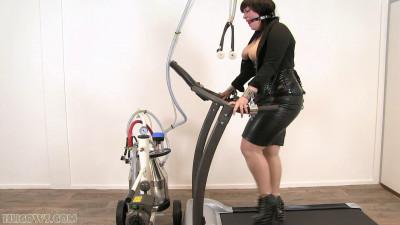 Katz Cow Exercise (2015)