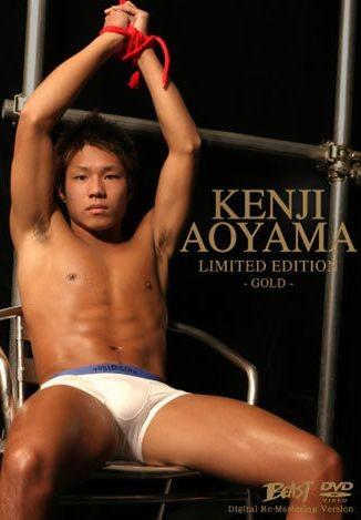 Japanese Stud — Kenji Aoyama — Gold Limited Edition