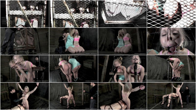 Flesh Circus 2013