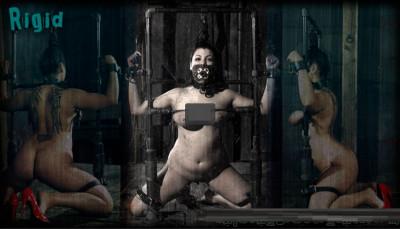 Rigid - Dana Vixen, Damon Pierce