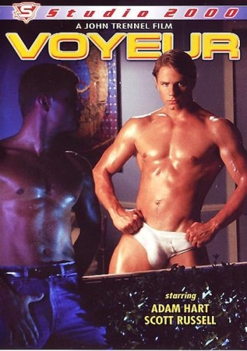 The Voyeur (1993) - hung guys fuck.