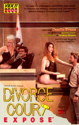 Divorce Court Expose (1987)