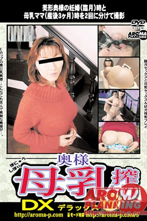ARMD-317 - Asian Pregnant Women Sex Videos
