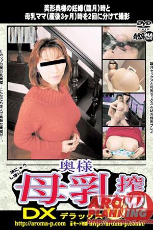 ARMD-317 - Asian Pregnant Women Sex Videos