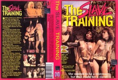 The Slave Training