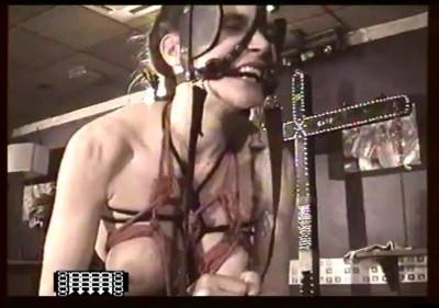 Slavegirls Pony Torment