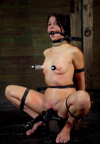 BDSM orgasms