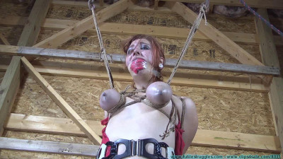 Bondage - Barnyard Bondage for Riley - Her Ordeal Continues - Part 3