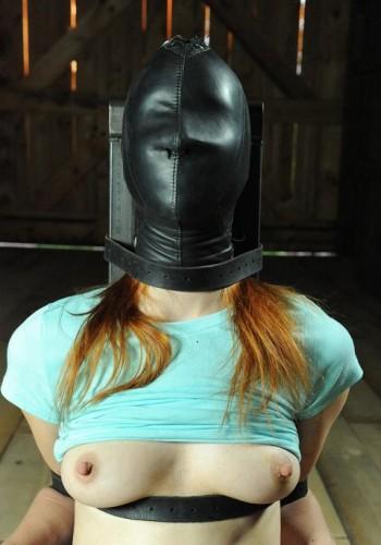 Hi, I'm your slave