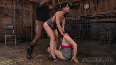 Elise Graves And Dixon Mason – Double Blind Study, Part 3 (2013) SiteRip