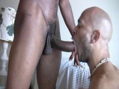 Hung & Mean