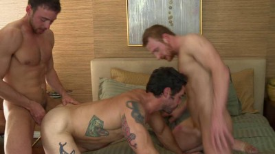Cayden, Danny & Sean - animals that are gay.