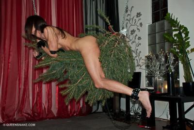 Poor Christmas Tree