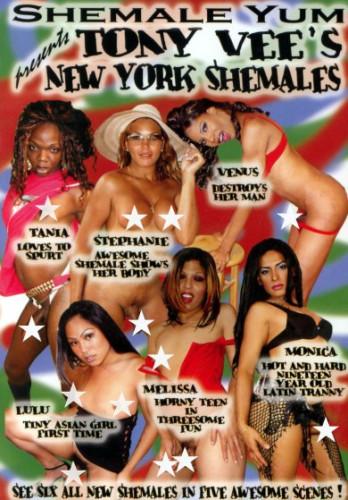 Tony Vees New York Shemales 1