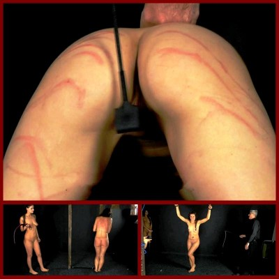 Domina Education (Part 2) ElitePain