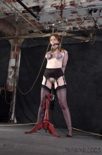 Insex – Miss Hudson – 331