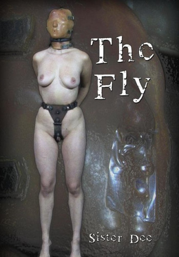 Sexy Dee-The Fly (Bonus) , HD 720p