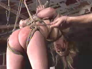 Insex - 26s Live Feed (26)