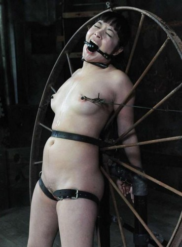 Wheel for torture
