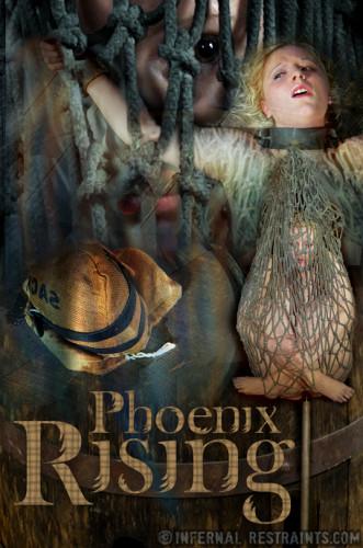 IR - Aug 01, 2014 - Phoenix