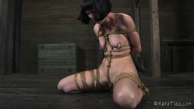 Clips and clamps are an especially insidious way to torment her
