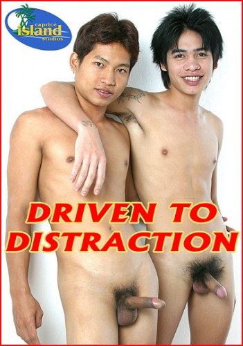 Driven To Distraction — Asian Gay, Hardcore, Blowjob