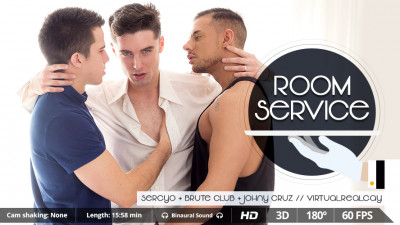 Virtual Real Gay — Room Service