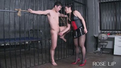 Luxury handjob ejaculation by the Queen with face sitting