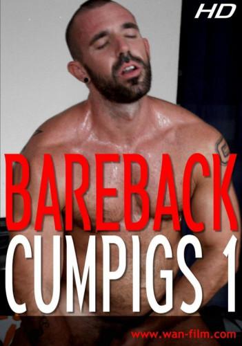 WaN Film – Bareback Cumpigs