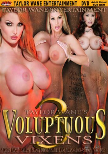 Voluptuous vixens vol3