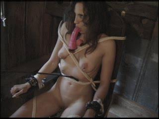 Tranny Torture