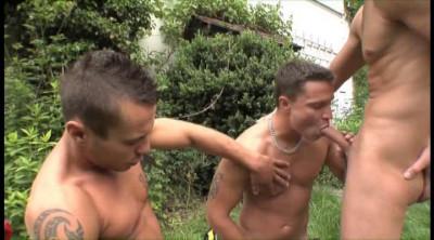 Triple Twink  ( Sparta Video )