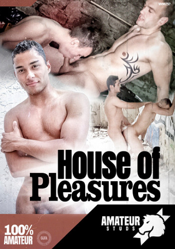 Amateur Studs — House of Pleasures
