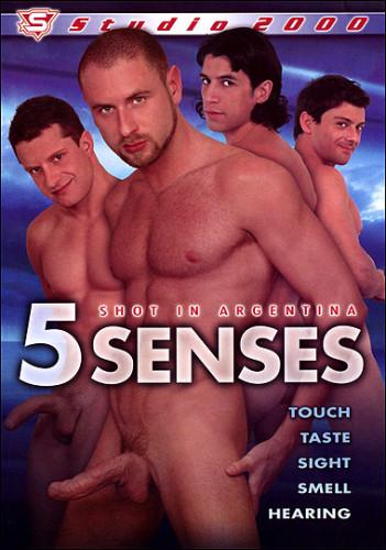 Studio 2000 – 5 Senses (2008)