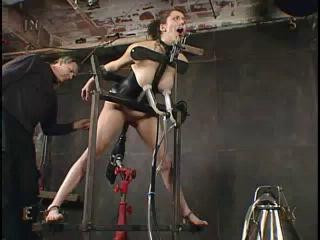 Insex – Flogged (Live Feed From November 9, 2003) – 202, 912, 114, 117