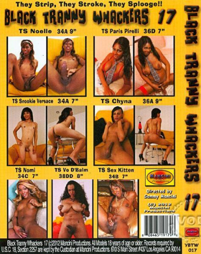 Black Tranny Whackers #17 CD2