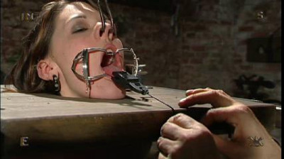 Vip Full Collection Insex 2004 – 50 Clips