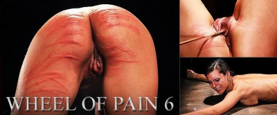 ElitePain - Wheel of Pain 6 HD 2015