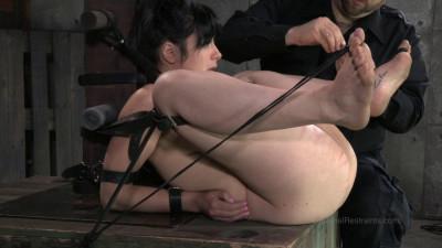 Siouxsie Q's Audition (2014)
