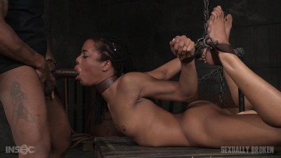 Kira Noir, Matt Williams, Maestro And  Jack Hammer