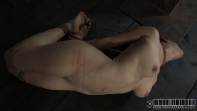 Realtimebondage – Jan 28, 2012 – I Own Her Face Part Two – Iona Grace