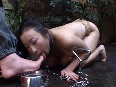 Sm Series Human Slave