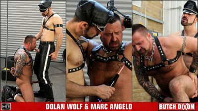 Dolan Wolf and Marc Angelo , trailers de video dude.