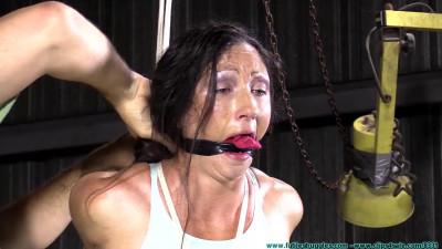 Maintenance Man Finally Has Enough Of The Cock Tease Gym Rat 1part – BDSM